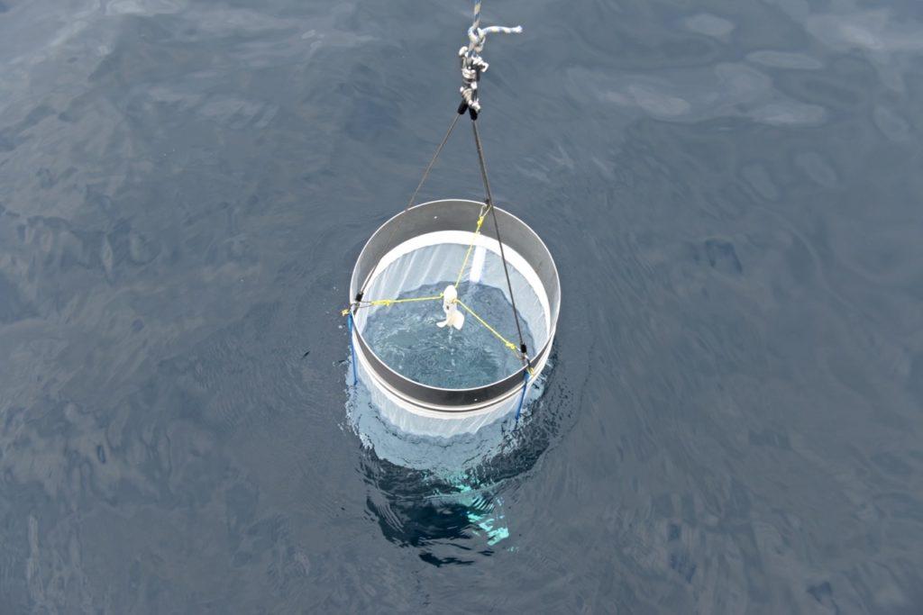 Immersion filet Neuston  (200 microns)