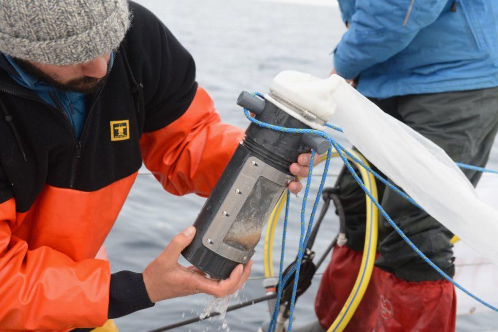 Tamisage du zooplancton pour récupérer et  éliminer l'eau de mer des échantillons